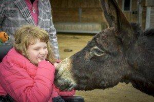 Zo krijg je gevoel voor ezels…