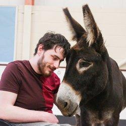 Het wonder van de ezeltherapie