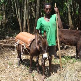 Van last tot een nieuw leven: het verhaal van Tewachew